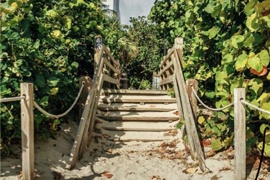 Secret Garden Miami Beach